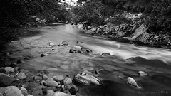 the soft flow of the river (lunaryuna) Tags: scotland cairngorms strathspey carrbridge river dulnain highlands nature landscape rapids rocks shore summer season blackwhite bw monochrome lunaryuna