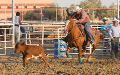 calf roping (jimbobphoto) Tags: calf rodeo house cowboy rope lariat fence hat
