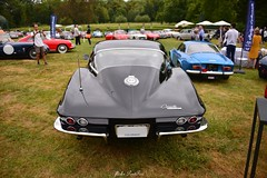 1964 Chevrolet Corvette Stingray (pontfire) Tags: chantilly arts lgance 2016 1964 chevrolet corvette stingray chantillyartslgance chantillyartsetlgance2016 richardmille classiccars oldcars antiquecars sportscars luxurycars automobileancienne automobiledecollection vieillevoiture car cars auto autos automobili automobile automobiles voiture voitures coche coches carro carros wagen pontfire worldcars voituresanciennes carsofexception oldtimer voituredesport automobiledelgende legendcars americancars americanmusclecars chteaudechantilly peterauto chantillyartslgance2016 chevroletcorvette vette chevy 64