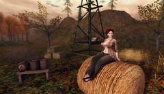 Harvest Time (Lucie Bluebird-Lexington) Tags: blueberry reign neve coldlogic exile collabor88 repose consignment floorplan jian studioskye