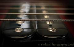 6 String Electric (HMM) (13skies) Tags: macromondays electricguitar strings pickups music macromondayinarow strum play clos macro guitar epiphone sound loud rock happymacromonday sonya100 sonyalpha instrument