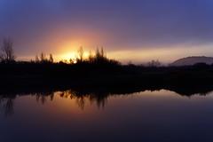 The perfect morning at lake Cerknica (marko.erman) Tags: lakecerknica cerkniskojezero cerknica lake intermittent sunrise morning water refelction reflections beautiful seren serenity calm nature sun mood moddy mist misty slovenia slovenija sony silhouette trees