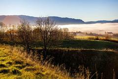 (Matilda Diamant) Tags: autumn fall nature norway october seasons norwegian nordic scandinavia rusalka
