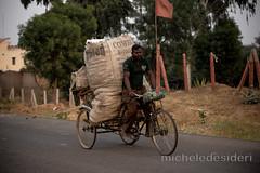 India uomo bicicletta (micheledesideri@gmail.com) Tags: road travel portrait people india face strada cyclist persone transportation ciclista worker laborer trade viaggi ritratto commercio volto mezziditrasporto operaio bicicetta manovale micheledesideri