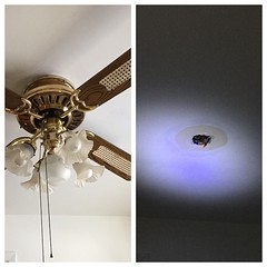 A little night time #diy doesn't make for the best photos... But getting rid of this fan is a happy moment nonetheless.