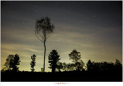 sized__H018977 (nandOOnline) Tags: nacht natuur avond hemel landschap nachtfotografie sterren sterrenbeeld stippelberg
