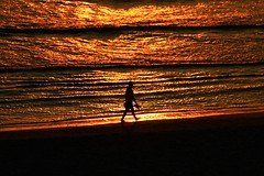 walking on the beach at sunset - Tel-Aviv (Lior. L) Tags: light sunset sea reflection beach silhouette backlight canon reflections golden israel telaviv shadows seascapes telephoto beaches canondslr goldenhour telephotolens canon70200f4l walkingonthebeach goldenhours canon600d canont3i canonkiss5 walkingonthebeachatsunsettelavivbeach