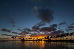Kohanamoku Lagoon at Sunset (Joseph Ridgway) Tags: sunset hawaii oahu lagoon honolulu waikikibeach tiltshift kohanamoku kohanamokulagoon