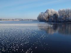 Even the lake has sometimes spotty coat! (Axiraa - back very soon) Tags: winter white lake ice frozen frost estonia 4winter järv jää härmatis saadjärv tartumaa külm vanagram äksi