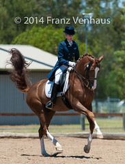 141129_Clarendon_6579.jpg (FranzVenhaus) Tags: horses sydney australia riding newsouthwales athletes aus equestrian supporters riders officials dressage spectatorsvolunteers