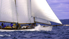 Race Favorite (joegeraci364) Tags: ocean new wood sea england cloud seascape heritage nature water beauty weather festival race landscape outdoors boat marine ship action yacht outdoor antique connecticut craft vessel atlantic maritime boating sail mast nautical brilliant amistad mystic whaler