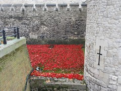 2014 11 26 041  Blood Swept Lands and Seas of Red (Mark Baker.) Tags: world uk november autumn red england london tower art english fall tom ceramic paul one photo blood war europe baker britain mark united great kingdom photograph installation poppy poppies gb british ww1 piper lands swept moat cummins seas outbreak 2014 centenary picsmark