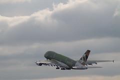 Airbus A380 (xwattez) Tags: france plane european aircraft airbus a380 toulouse blagnac avion 2014 aroport europen etihad fwway lfbotls