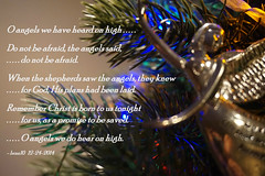 do not be afraid..... (bran10) Tags: saved christmas blue red baby tree yellow god quote jesus ornament angels afraid plans shepherds poetographychristmas