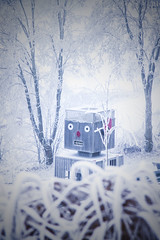 Winterimpressionen Winterberg