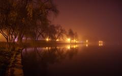Through the haze (Sorin Mutu) Tags