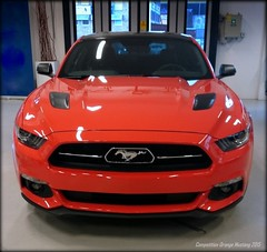 Flat Rock Wrap Job? No. (Papa Razzi1) Tags: coyote ford mustang gt 50 v8 musclecar 2015 competitionorange