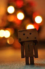 (|Gina|) Tags: christmas lights december bokeh danbo danboard