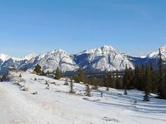 Rocky Mountains (kevinmklerks) Tags: winter snow forest rockymountains banffnationalpark