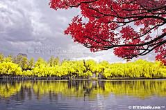 Green Lake (Infrared) (2121studio) Tags: china nature ir nikon surrealism dream nikond50 ali greenlake illusion malaysia infrared  indah kunming wonderland kuantan alam peoplesrepublicofchina mimpi nikonian d90 malaysianphotographer southwestchina   traveltochina ilusi khayalan convertedinfraredcamera 2121studio kuantanphotographer pahangphotographer  ciptaanallahswt malaysianinfraredphotographer yunnanfu kembarakechina yunnanprovice