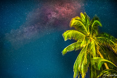 Milky Paradise 2 (sean.hackerteper) Tags: longexposure nightphotography beach nature night landscape nikon nightscape belize wildlife wilderness milkyway