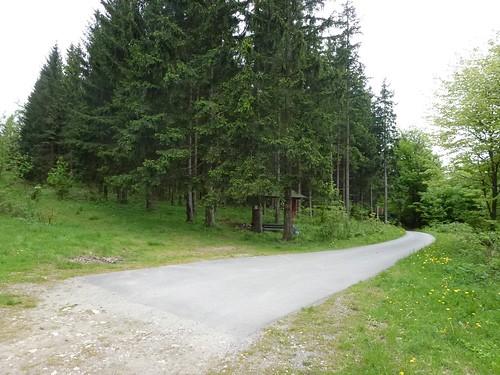 Asfalt po polskiej stronie Przełęczy Gierałtowskiej (684 m)