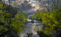 Disappearing sunshine  (kaising_fung) Tags: green woods stream cloudy