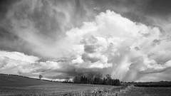 Distant Cloud (aveyardphotography) Tags: cloud white black tree rain mono hill hills hedge burst distant howardian
