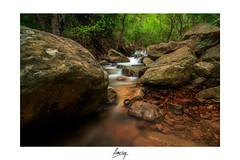 Ro de la Miel (flamesay) Tags: rio canon river andalucia tokina bosque cadiz algeciras haida riodelamiel flamesay lucroit