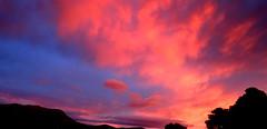 Amazing Sky over Mount Wellington (elliott.lani) Tags: pink sunset mountain color colour nature beautiful clouds sunrise outdoors skies bright vibrant mount colourful pinksky lani allrightsreserved pinkskies naturephotography mountwellington kunanyi elliottlani lanielliott tasmanianskies tasmaniansky