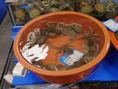 Octopus is a delicacy in South Korea and is ment to be swallowed hole to get more stamina. I had a look but dident try, at least not this time.