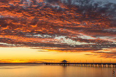 Red Sky In The Morning (scorpio.bird) Tags: ocean sea cloud seascape water sunrise dawn pier jetty queensland shorescape shorncliffe