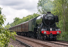 Flying Scotsman 25/05/16 (m_c2012) Tags: train surrey locomotive guildford flyingscotsman steamlocomotive cathedralsexpress 60103