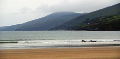 Silver Lining (little_frank) Tags: ireland sea wild summer panorama irish beach nature skyline landscape sand scenery solitude view cloudy space sandy dream wave kerry cliffs dreaming hills shore foam lone lonely wilderness seashore atlanticocean slope admiring waterscape dinglepeninsula observing silverlining inchstrand corcadhuibhne pennsuladedingle wildatlanticway