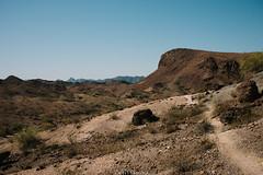 5R6K2474 (ATeshima) Tags: arizona nature havasu