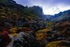 ES8A2027 (repponen) Tags: ocean nature island hawaii rocks maui blowhole monuments nakalele canon5dmarkiii