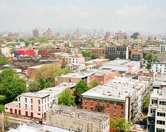 New York Fog (danielfoster437) Tags: nyc newyorkcity newyork fog brooklyn citylife newyorklife foggyday urbanliving mamiya7 cityliving medumformat brooklynnewyork newyorkbuildings newyorkliving newyorkbrooklyn newyorkhomes newyorkrealestate newyorkfog newyorkapartments newyorkhousing brooklynrealestate meinfilmlab wwwmeinfilmlabde newyorkskylinefog