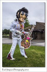 Elvis Presley 'Scarecrow' (Paul Simpson Photography) Tags: music comedy village character cartoon scarecrow elvis event scarecrows effigy lookalike elvispresley northlincolnshire photosof imageof photoof scawby imagesof sonya77 paulsimpsonphotography june2016