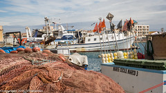 160403_lan_her_set_2916.jpg (f.chabardes) Tags: france languedoc ste vieuxport hrault avril 2016 2t