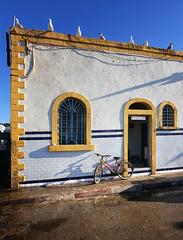 marocco (peo pea) Tags: africa sunset morocco marocco essaouira
