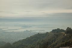 IMG_7193 (Matthew R Morgan) Tags: grizzypeak san francisco sanfrancisco eastbay east bay cliff view city bridge baybridge