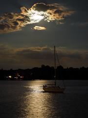Under the golden moonlight (marina_felix) Tags: 3651 366 sail boat sky golden gold light moon clouds night sea horizon water shore landscape seaside moonrise serene outdoor vehicle
