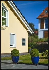 L8002993  -  Bokeh @1.5   (Niedernjesa) (Max-Friedrich) Tags: leica leicam8 summarit 50mm leitz outdoor bokeh architektur