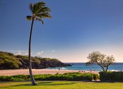 Paradise (UGraphy) Tags: paradise usa beach ocean bigisland outdoor vacation hawaii pacific hapuna hilo unitedstates us