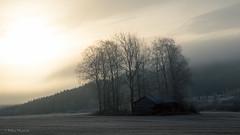 Frosty sunrise (mn_fotomusic) Tags: kuura maisema pakkanen pelto frozen frosty landscape sunrise finland scandinavia field trees forest barn hills fog autumn october morning early nature canon 6d lightroom aamu auringonnousu sumu jyvskyl suomi
