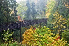 footbridge, fort creek conservation area (twurdemann) Tags: autumn bridge canada conservationarea corten fall2016 fallcolor fallcolour fog forest fortcreek fujixt1 hubtrail landscape leaves morning nikcolorefex northernontario ontario park saultstemarie scenic steel tonalcontrast trees weather