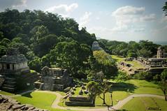 palenque ruinas (karolajnat) Tags: mountain green azul mexico agua aqua pyramid palm jungle waterfalls ruinas palenque chiapas mayas misolha aquaazul