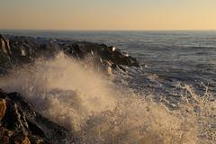 Marina di Pisa (pineider) Tags: shower italia pisa topless sunbathing marinadipisa
