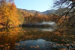The haze (s_gulfidan) Tags: autumn trees mist lake yedigller 400faves saariysqualitypictures