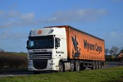 DAF XF 105 'Wyvern Cargo' reg HY12 VSX (erfmike51) Tags: lorry artic curtainside dafxf105 wyverncargo